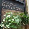 Breakfast Oasis at Botanico Gastrobar